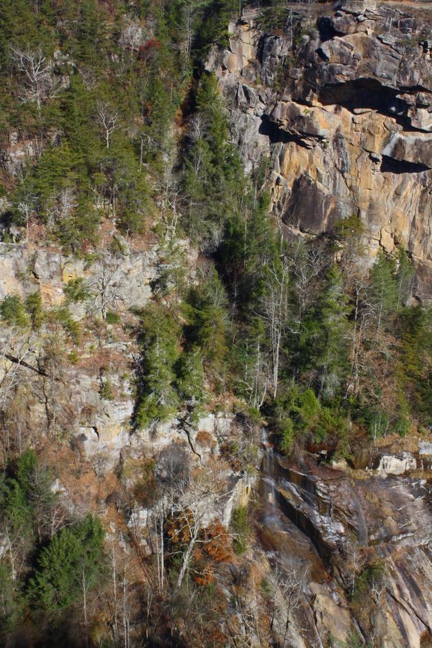 Caledonia Cascade Falls